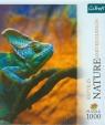 Puzzle 1000 Nature Kameleon  (10500)