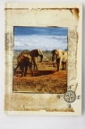 Brulion A5 w kratkę 96 kartek Zwierzęta