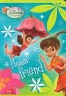 Zeszyt A5 Disney Wróżki w kratkę 16 kartek flower friend