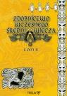 Zdobnictwo wczesnego średniowiecza Tom 2