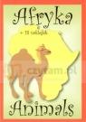 Animals Afryka + 18 naklejek