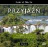 Przyjaźń  (Audiobook) Nęcek Robert, Trela Jerzy, Piotrowski Paweł