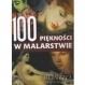 100 PIĘKNOŚCI W MALARSTWIE  Wróblewska Reszko Joanna red.
