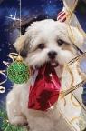 Mini kartka 3D Świąteczny Pies