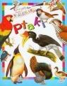 Ptaki Poznajemy świat Zabawa z naklejkami