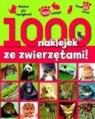 1000 naklejek ze zwierzętami