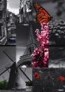 Zeszyt A5 Top-2000 w kratkę 60 kartek Black&White mix
