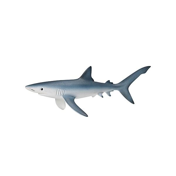 Rekin Błękitny (14701)