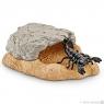 Jaskinia skorpiona - 42325