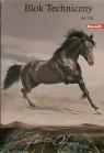Blok techniczny A4/10K 10 szt. Horses