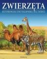 Zwierzęta Ilustrowana encyklopedia dla dzieci