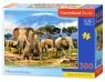 Puzzle Kilimanjaro Morning 300 (B-030019)