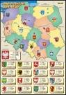 Administracyjna Mapa Polski z herbami stolic województw