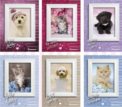 Zeszyt A4 Rachel hale w kratkę 54 kartek Kot w lustrze