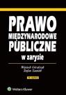 Prawo międzynarodowe publiczne w zarysie Góralczyk Wojciech, Sawicki Stefan