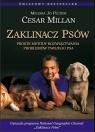 Zaklinacz psów Proste metody rozwiązywania problemów Twojego psa Millan Cesar, Peltier Melissa Jo
