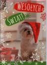 Karnet świąteczny BN B6 PG świecki i religijny MIX DL LUX