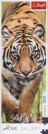 Puzzle 300: Skradający się tygrys (75002)