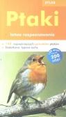 Ptaki łatwe rozpoznawanie