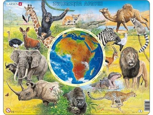 Zwierzęta Afryki