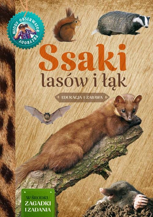 Ssaki lasów i łąk Młody Obserwator Przyrody Wilamowska Małgorzata