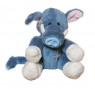 Niebieski nosek - dzik Trotters (G73W0106)
