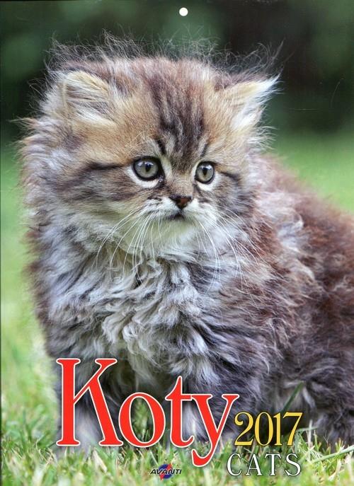 Kalendarz 2017 KSM-4 ścienny mały Koty