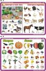 Podkładka edukacyjna Nauczanie Zintegrowane. Warzywa, Owoce, Zwierząta w Moim Domu/W Zagrodzie