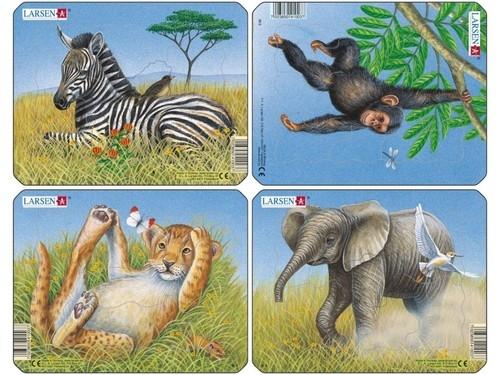 Lew / Słoń / Małpa / Zebra