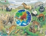 Zwierzęta Azji