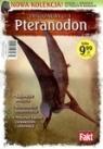 Pteranodon. Dinozaury cz.3. Książka + figurka