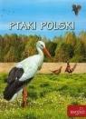 Ptaki Polski w.2015