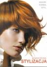 Nowoczesna stylizacja - kolor, forma, styl w.2011