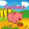 Mała świnka Mini zwierzątka