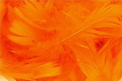PIÓRKA w torebce  FOLI.15 GRAM pomarańczowe