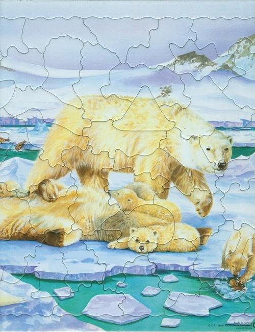 Niedźwiedź polarny Puzzle