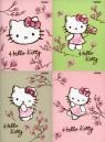 Zeszyt A5 Top-2000 w trzy linie 16 kartek Hello Kitty Magnolia mix