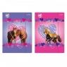 Teczka z gumką A4 Sweet Horses (298952)