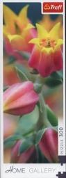 Puzzle 300: Kwiaty w rozkwicie (75005)