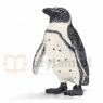 Pingwin afrykański new 2013 (14705)