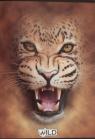 Zeszyt A5 Wild w kratkę 60 kartek Lew
