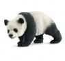Panda olbrzymia (14706)