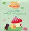 Historyjki dla maluchów Opowiastki o małych zwierzątkach
