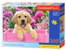 Puzzle Labrador Puppy in Pink Box 300 (B-030071)