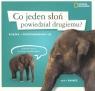 Co jeden słoń powiedział drugiemu