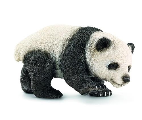 Młoda Panda Olbrzymia (14707)
