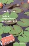 Algebra bezgranicznej sprawiedliwości Roy Arundhati