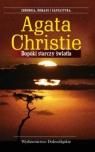 Dopóki starczy światła  Christie Agata