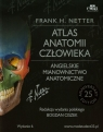 Atlas anatomii człowieka Angielskie mianownictwo anatomiczne  Netter Frank H.