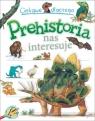 Ciekawe dlaczego Prehistoria nas interesuje
